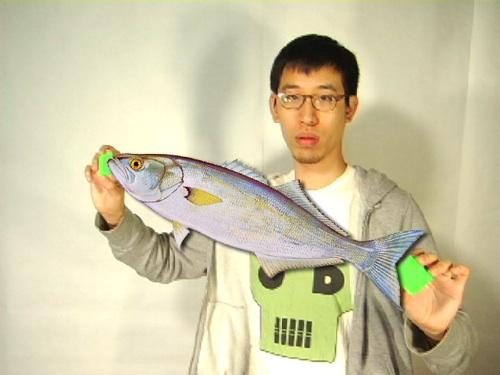 A Fish This Big