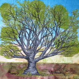"Hadley Common beech 8x8"""