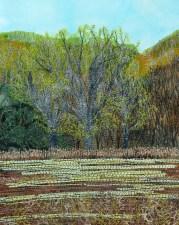 """meadow maple, greening 8x10"""""""