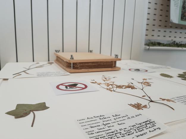 Des panneaux indiquent qu'il est interdit de toucher les herbiers pour limiter les contacts, le jeudi 8 octobre 2020 à Yzeure dans l'Allier, rue Parmentier (Maison des arts et des sciences). Photo : Charline Ragoua