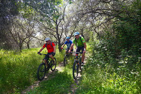 activities-biking