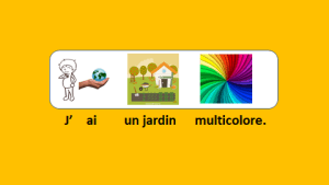 Les couleurs de mon jardin – vidéo 64