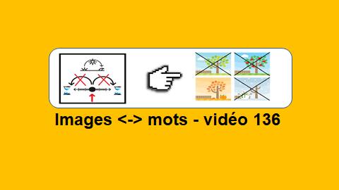 Images <-> Mots – vidéo 136