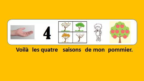 Les 4 saisons de mon pommier - vidéo 143 - le Français illustré