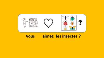 Les insectes – vidéo 175