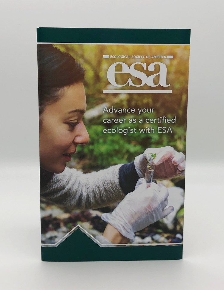 ESA brochure cover