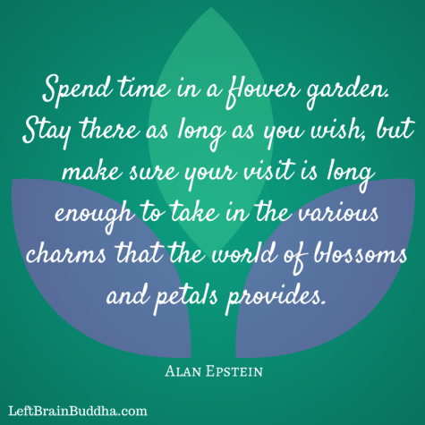 Spend time in a flower garden