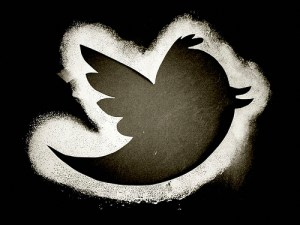 The twitter bird - photo by Andreas Eldh