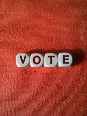 Vote - photo by Ann Douglas