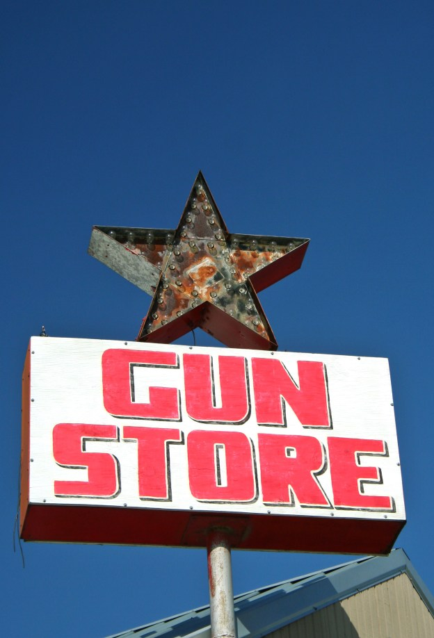 A Constitutional Challenge to a Different Kind of Gun Control Legislation