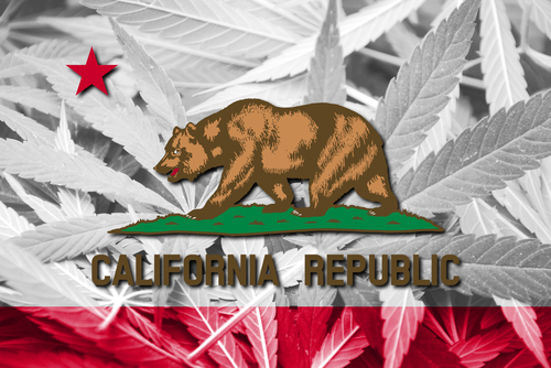 A Bit of Caution and Guidance Before Everyone on the Left Coast Goes to Pot
