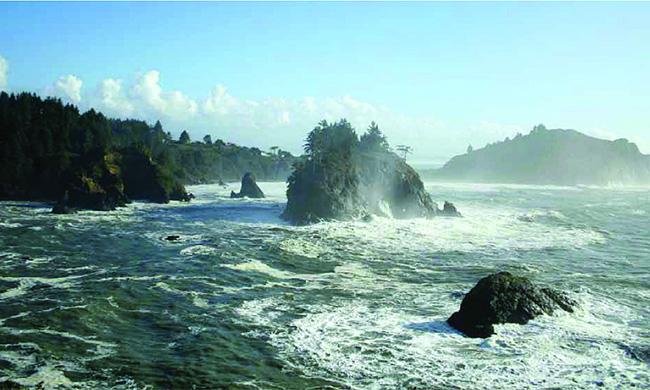 redwoods-beach-650