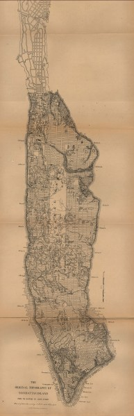 New York Maps   Perry Casta    eda Map Collection   UT Library Online  396K   New York City 1880  Map