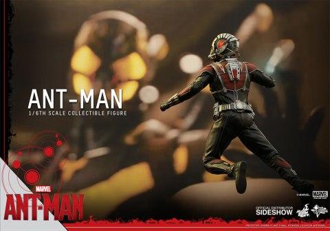 902448-ant-man-15