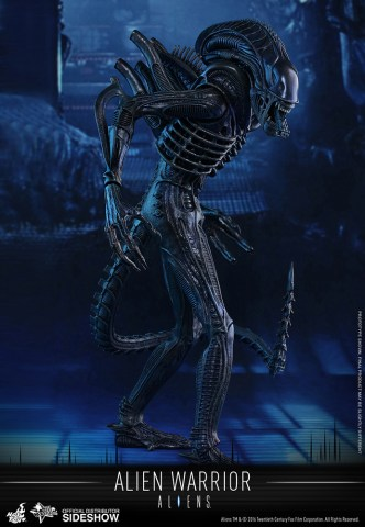 aliens-alien-warrior-sixth-scale-hot-toys-902693-01