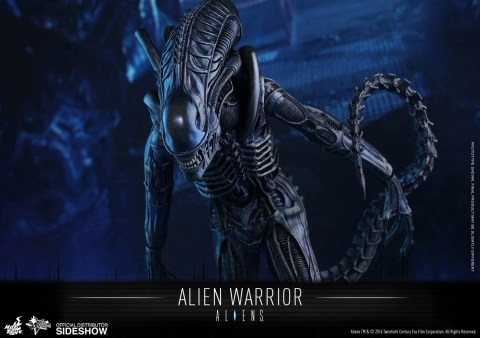 aliens-alien-warrior-sixth-scale-hot-toys-902693-08