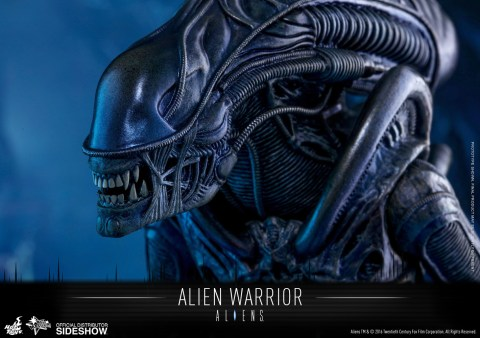 aliens-alien-warrior-sixth-scale-hot-toys-902693-16