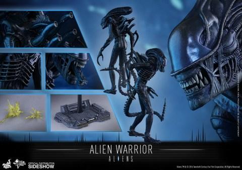 aliens-alien-warrior-sixth-scale-hot-toys-902693-17
