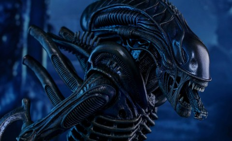 aliens-alien-warrior-sixth-scale-hot-toys-feature-902693