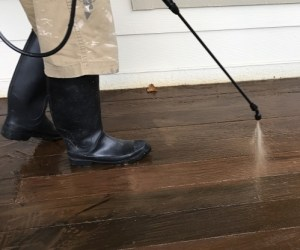 apply stripper to remove old deck stain