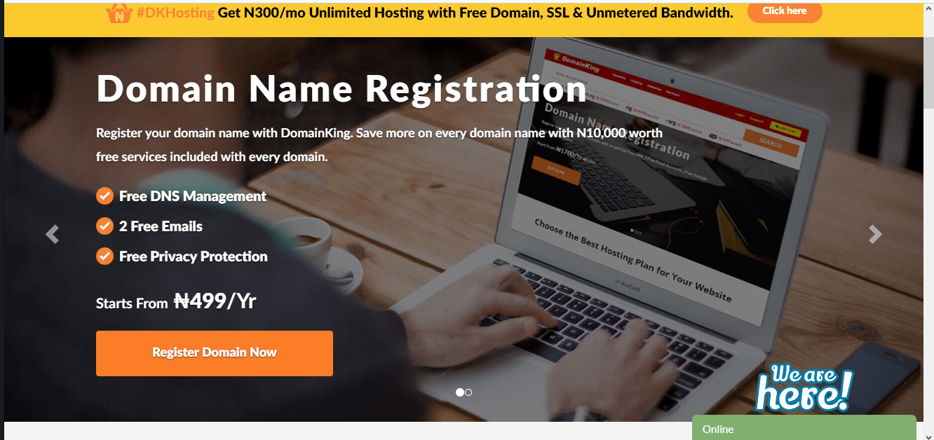 Domain name registration with domainking