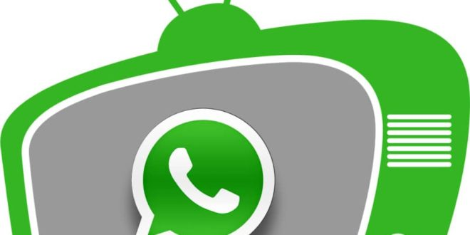 Whatsapp TV With The Highest Views in Nigeria
