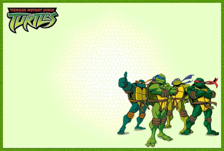 53 standard ninja turtle birthday