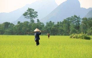 vietnam-babe-site
