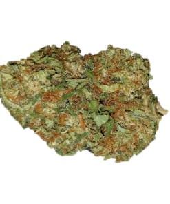 Order bubble gum cannabis online