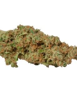 Order Gorilla Glue weed strain online