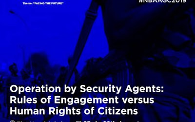 Operations by Security Agents: Rules of Engagement v. Human Rights of Citizens
