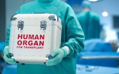 #ObscureLegalFacts – Organ Harvesting in Nigeria | Arome Abu