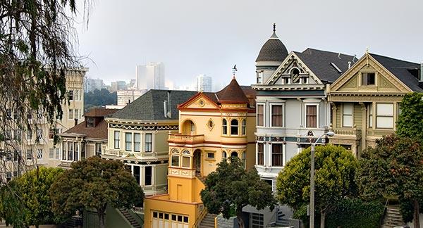 The balance of organic urbanism for Steiner street