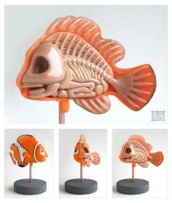 nemo_anatomt_sculpt_by_freeny-d2yn6ew