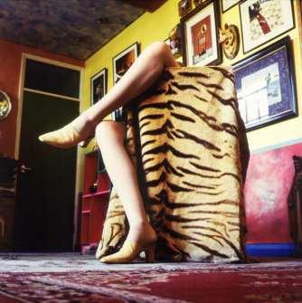 legs-tiger-skin