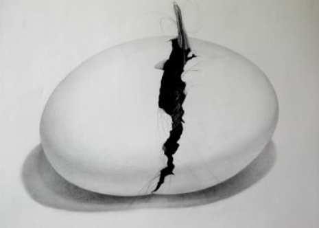 12_Egg