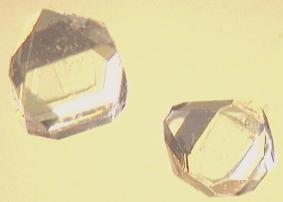 Cristalli xilitolo