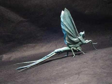 mayfly2 (1)