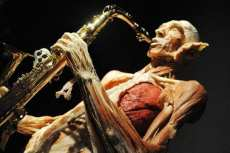 body-worlds-exposition01