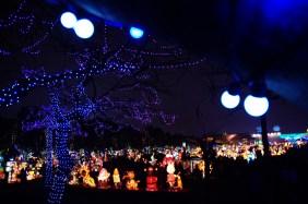 Taiwan Lantern Festival 3
