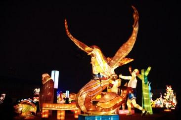 Taiwan Lantern Festival 11