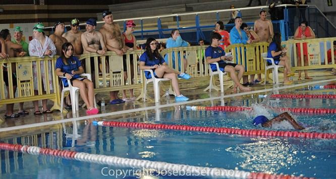 natacion-femaddi
