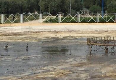 Leganemos denuncia la falta de previsión en las labores de limpieza del Parque El Carrascal