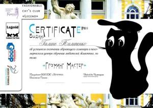 сертификат груминг мастер