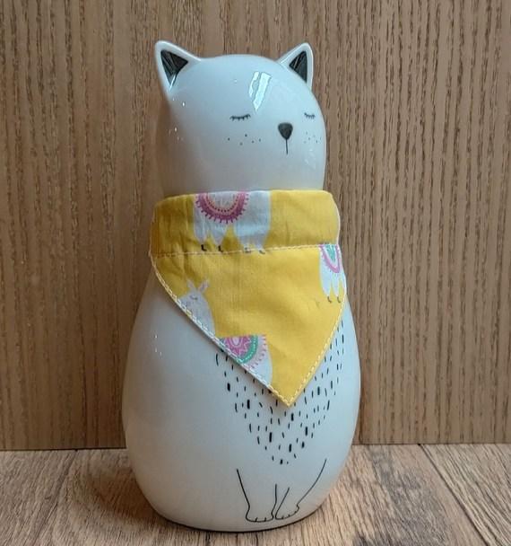 chat-avec-bandana-lama