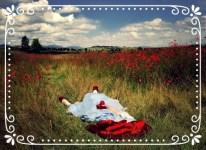 Dorothy nel campo di papaveri - Il Mago di oz