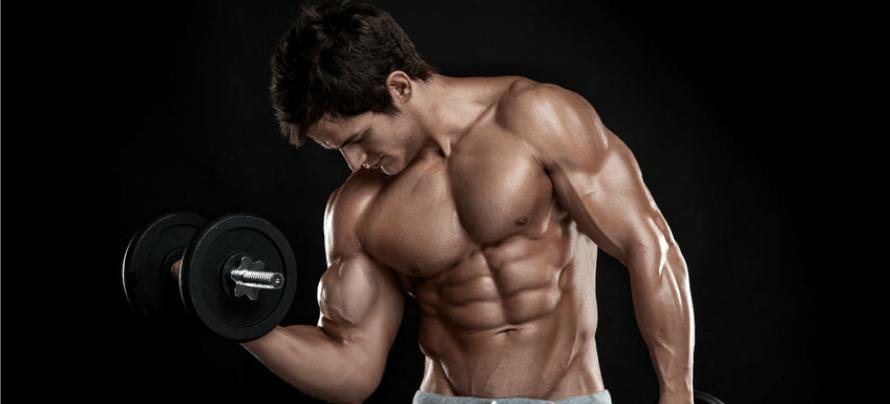macronutrient calculator bodybuilding