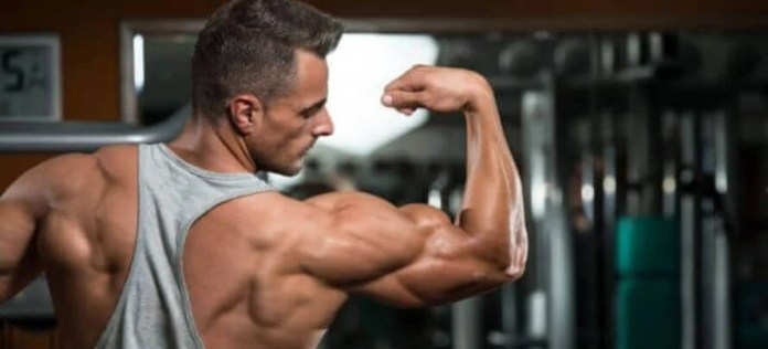 best tricep workout for size