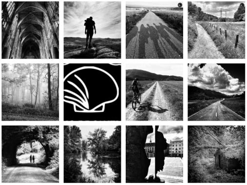 Camino de Santiago Black And White