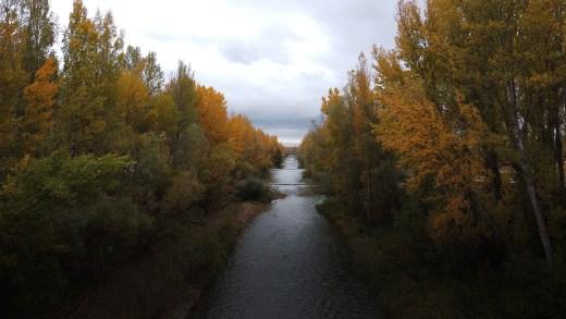 Rio Bernesga en Otoño